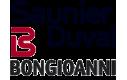 Запчасти: Saunier Duval, Bongioanni